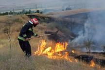تابستان امسال 383 فقره آتش سوزی عمدی در همدان رخ داد