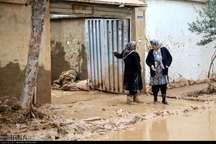 رسوبات ؛ گوهر گران قیمت اما زیانبار سیلاب