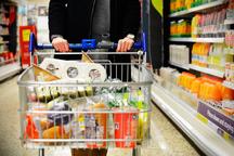 خودداری مردم از خرید هیجانی به تعدیل قیمت ها کمک می کند