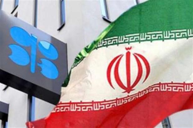 بلومبرگ: ایران برنده نشست اوپک