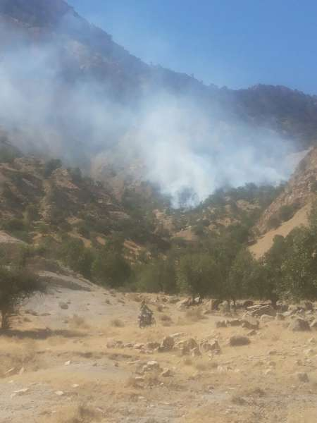 مدیرکل منابع طبیعی خوزستان: آتش سوزی در جنگل های بهبهان مهار شد