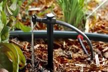 فرماندار مهریز جداسازی آب شرب از  فضای سبز را خواستار شد