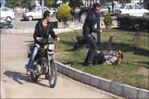 مراجعه ۸۱۸۱ نفر به دلیل نزاع به پزشکی قانونی طی نه ماه امسال  افزایش ۵.۶ درصدی تصادفات فوتی در کردستان