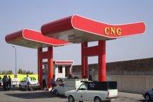 68 جایگاه گاز سی ان اجی در استان دارای تائیدیه استاندارد هستند