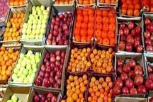 توزیع 840 تن سیب و پرتقال در مازندران