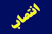سرپرست اداره فرهنگ و ارشاد اسلامی شوش منصوب شد
