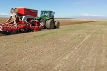 کشت پاییزه در 50 هزار هکتار زمین کشاورزی اندیمشک آغاز شد