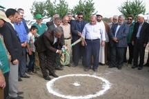 احداث یک گلخانه سبزی و صیفی در گنبدکاووس آغاز شد
