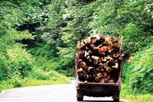 کشف 15 تن چوبآلات جنگلی از قاچاقچیان در گرمی