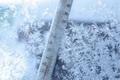 جهاد کشاورزی آذربایجان غربی درباره خسارت سرما زدگی هشدار داد