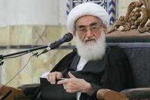 آیت الله نوری همدانی: ایرانیان برای تعیین سرنوشت خود در انتخابات شرکت کنند