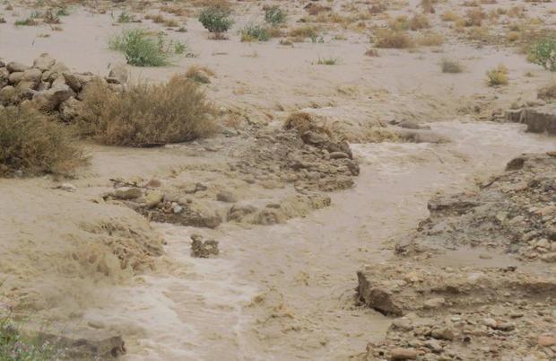 بارش های پاییزی سیستان و بلوچستان را فرا گرفت