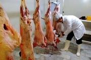 ۷۳ اکیپ بهداشتی روز عید قربان در خراسانجنوبی فعالیت میکنند