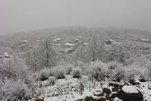 برف و سرما برخی مدارس استان سمنان را تعطیل کرد