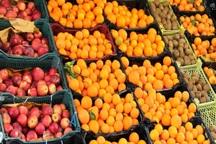 میوه عید اردبیل از 25 اسفندماه توزیع می شود
