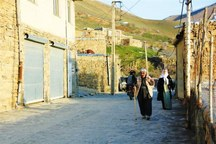 13 طرح اشتغالزا در روستاهای ایلام اجرا می شود