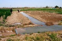 اجرای دستورالعمل بهره وری آب در بخش کشاورزی خوزستان
