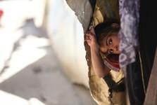 پناهندگان فلسطینی قربانی ترامپ، کوشنر و معامله قرن