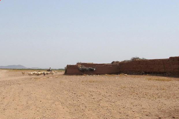 زنجان در رتبه نخست فرسایش خاک کشور ایستاد