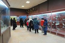 بازدید از موزه تنوع زیستی محیط زیست قزوین رایگان شد