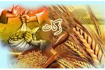 بیش از 750 میلیون ریال زکات در شهرستان ایرانشهر جمع آوری شد