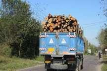 قاچاقچی چوب در کازرون دستگیر شد
