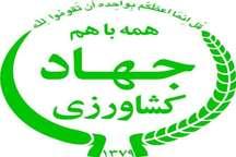 اختصاص 878 میلیارد ریال برای مکانیزاسیون کشاورزی خراسان رضوی