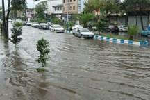 بارش باران موجب آبگرفتگی معابر بروجرد شد