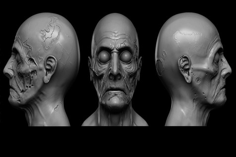 استفاده از مدلهای کامپیوتری سه بعدی صورت در جراحی ترمیمی