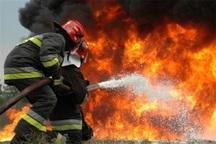 آتش نشانان میاندوآبی 313 حریق را امسال مهار کردند