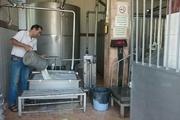 شیرخام در مراکز جمعآوری  ابرکوه پایش میشود