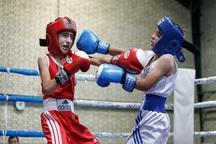 ورزشکاران بوکانی در المپیاد کشوری بوکس درخشیدند