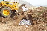 لاشه های مرغ رها شده در حاشیه رودخانه گاماسیاب دفن شد