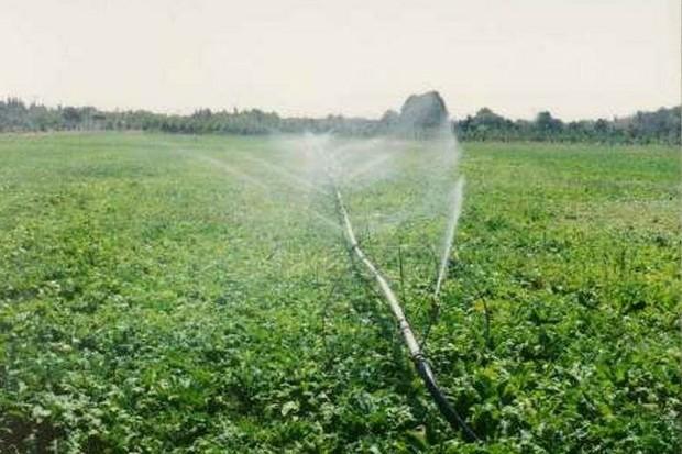 کشاورزان دزفول از طرح آبیاری تحت فشار استقبال کردند