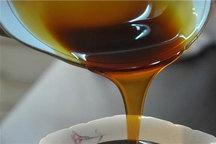 نخستین واحد تولیدی شیره و سرکه انگور در خراسان شمالی آغاز به کار کرد