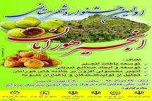 جشنواره انجیر هورامان در شهر سروآباد برگزار می شود