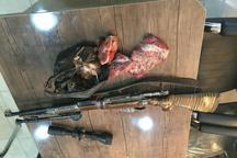 شکارچی قوچ وحشی در خوشاب بازداشت شد