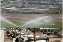 افتتاح 63 پروژه توسط سازمان جهاد کشاورزی استان در هفته دولت