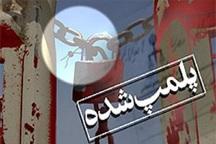 13 واحد صنفی آلاینده در جنوب تهران پلمب شد