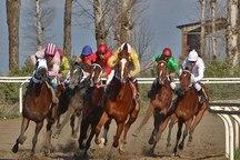 62 راس اسب در هفته نوزدهم مسابقات اسبدوانی گنبد رقابت کردند