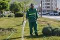 سرانه فضای سبز در شهر دوگنبدان به 12 مترمربع رسید