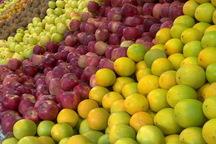 850 تن میوه تنظیم بازار در قم توزیع شد