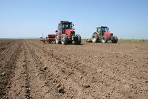 کشت پاییزه در 134 هزار هکتار از مزارع کهگیلویه و بویراحمد