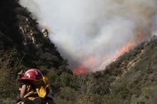 کالیفرنیا همچنان می سوزد/ 44 کشته تاکنون+ تصاویر