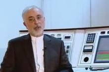 علی اکبر صالحی: در صورت لغو برجام اجرای پروتکل الحاقی را متوقف میکنیم