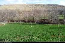 چهار هزار و 700 هکتار از اراضی ملی و کشاورزی لرستان تعیین تکلیف شد