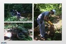 سرنوشت عجیب زبالههای پاکسازی شده توسط دوستداران محیط زیست لاهیجان!   تصاویر