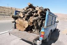یک محموله غیر مجاز چوب در آوج کشف و ضبط شد