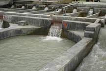 چهار طرح پرورش ماهی در مناطق گرمسیری کهگیلویه و بویراحمد مجوز گرفت