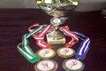 ورزشکاران نهاوندی400 مدال رنگارنگ کسب کردند